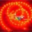 ไฟสายยาง(ท่อกลม) LED 100 m สีแดง thumbnail 2