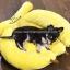 ที่นอนสุนัข ที่นอนหมา รูปกล้วยหอม (L) thumbnail 2