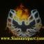 ฟิล์มโลโก้ fire bird thumbnail 2