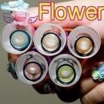 Flower Blue Dreamcolor1 คอนแทคเลนส์ ขายส่งคอนแทคเลนส์ Bigeyeเกาหลี ขายส่งตลับคอนแทคเลนส์