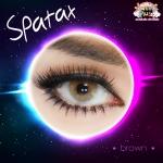 Spatax Brown sweetylens คอนแทคเลนส์ตาฝรั่ง