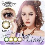 Lindy Gray Dreamcolor1เลนส์นิ่มใส่สบาย คอนแทคเลนส์ ขายส่งคอนแทคเลนส์ ขายส่งBigeye บิ๊กอายเกาหลี