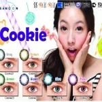 Cookie Brown Dreamcolor1 คอนแทคเลนส์ ขายส่งคอนแทคเลนส์ Bigeyeเกาหลี ขายส่งตลับคอนแทคเลนส์