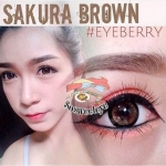 สั้น/power -250 SAKURA BROWN EYEBERRYLENS