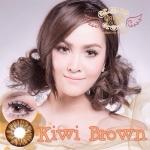 Kiwi Brown Dreamcolor1 คอนแทคเลนส์ ขายส่งคอนแทคเลนส์ Bigeyeเกาหลี ขายส่งตลับคอนแทคเลนส์