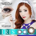 Iris Brown Dreamcolor1 เลนส์นิ่มใส่สบาย บิ๊กอายเกาหลีแท้100% ขายส่งคอนแทคเลนส์ ขายส่งBigeye