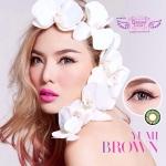 Yumi Brown Dreamcolor1 คอนแทคเลนส์ ขายส่งคอนแทคเลนส์ Bigeyeเกาหลี ขายส่งตลับคอนแทคเลนส์ ขายส่งน้ำยาล้างคอนแทคเลนส์