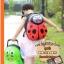 กระเป๋าเดินทางเด็ก รุ่น Animal แมลงเต่าทอง thumbnail 11