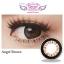Angel Brown Dreamcolor1เลนส์นิ่มใส่สบาย คอนแทคเลนส์ ขายส่งคอนแทคเลนส์ ขายส่งBigeye Bigeyeเกาหลี thumbnail 2