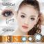 Iris Gray Dreamcolor1 เลนส์นิ่มใส่สบาย บิ๊กอายเกาหลีแท้100% ขายส่งคอนแทคเลนส์ ขายส่งBigeye thumbnail 1