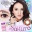 Sakura Brown Dreamcolor1เลนส์นิ่มใส่สบาย คอนแทคเลนส์ ขายส่งคอนแทคเลนส์ ขายส่งBigeye บิ๊กอายเกาหลี thumbnail 1