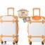 กระเป๋าเดินทางวินเทจ รุ่น colorful ขาวคาดน้ำตาล ขนาด 22 นิ้ว thumbnail 3