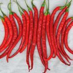 พริกคาเยนผลยาวสีแดง - Long Red Cayenne Pepper 1 ออนซ์