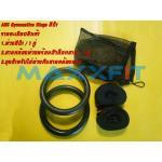 Gymnastics Rings (Gym Rings) ABS สีดำ รุ่น สายคล้องธรรมดา