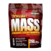 Mutant Mass chocolate 260g minibag