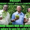 ชายที่ช่วยรักษาภรรยาจากโรคมะเร็งด้วย ทุเรียนเทศ soursop