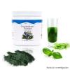 Unicity Chlorophyll Powder คลอโรฟิลล์ ยูนิซิตี้ ช่วยล้างสารพิษ