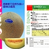เมล่อนชารอน 2 - Syaron 2 Melon (พรีออเดอร์)