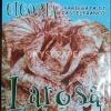 ชิโครี่วาเรียกาต้าดิคาสเทลฟรานโก - Chicory Variegata Di Castelfranco