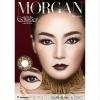 Morgan Brown Dreamcolor1เลนส์นิ่มใส่สบาย คอนแทคเลนส์ ขายส่งคอนแทคเลนส์ ขายส่งBigeye Bigeyeเกาหลี