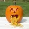 ฟักทองแจ็คโอแลนเทิร์น - Jack O Lantern Pumpkin