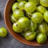 กูสเบอรี่ - Gooseberry (Ribes uva-crispa)