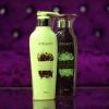 ไฮบิวตี้ แชมพู และ ทรีทเมนท์ HyBeauty Vitalizing Hair & Scalp Shampoo and Conditioner