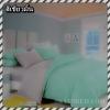ผ้าปูที่นอนสีพื้น เกรด A สีเขียวมิ้น ขนาด 6 ฟุต 5 ชิ้น