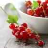 เคอเร้นท์แดง - Red currant (smorodina krasnaya)