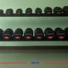 ชุดดัมเบล MAXXFiT ทรง 12 เหลี่ยม ขนาด 5 - 50 LBS. (10 คู่) พร้อมชั้นวาง 2 ชั้น 10 คู่ สีเงิน