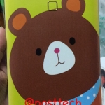 iTAB 705 HW1 - Bear