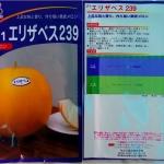 เมล่อนอลิซาเบธ239 F1 - Elizabeth239 F1 Melon (พรีออเดอร์)