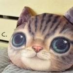 หมอนแมว (Cat Head Pillow) ลายC