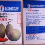 เมล่อนเซียงอวี่ผลยาว - Long Xiang Yu Melon (พรีออเดอร์)