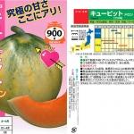 เมล่อนคิวปิด - Cupid Melon (พรีออเดอร์)