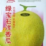 เมล่อนมรกต - Emerald Melon