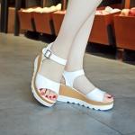 พรีออเดอร์ รองเท้า (ขาว,ชมพูอ่อน,ฟ้า,ดำ) ไซส์35-39