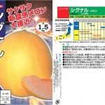 เมล่อนซิกแนล - Signal Melon (พรีออเดอร์)