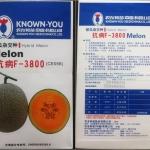 เมล่อนดีซีซรีซีสแตนท์ เอฟ-3800 - Disease Resistance F-3800 Melon (พรีออเดอร์)
