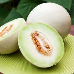 เมล่อนฮันนี่ดิว - Honeydew Melon