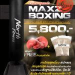 กระสอบทรายตั้งพื้นรุ่น Maxz Boxing