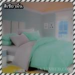 ผ้าปูที่นอนสีพื้น เกรด A สีเขียวมิ้น ขนาด 5 ฟุต 5 ชิ้น