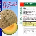 เมล่อนแอนนิเวอร์ซารี - Anniversary Melon (พรีออเดอร์)