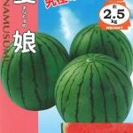 แตงโมมานะมูสุเมะ - Manamusume Watermelon (พรีออเดอร์)