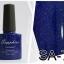ยาทาเล็บเจล Sapphire ใช้ดี ราคาถูกๆ thumbnail 27