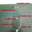 โปรโมชั่น Mini Fit @ Home เก้าอี้ยกดัมเบล AB 109 & ดัมเบล Fix น้ำหนัก 20 KG. thumbnail 4