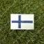 อาร์มปักธงฟินแลนด์