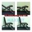 เก้าอี้ดัมเบลแบบพับเก็บได้ MAXXFiT รุ่น AB110 thumbnail 2