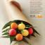 EOS Lip Balm Smooth Sphere : Medicated Tangerine กลิ่นส้มหวานๆ เหมาะสำหรับปากที่แตกเนื่องจากความเย็น ช่วยป้องกันการติดเชื้อ thumbnail 7