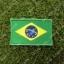 อาร์มปักธงบราซิล